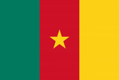 Top Cameroon Bitcoin online Casinos